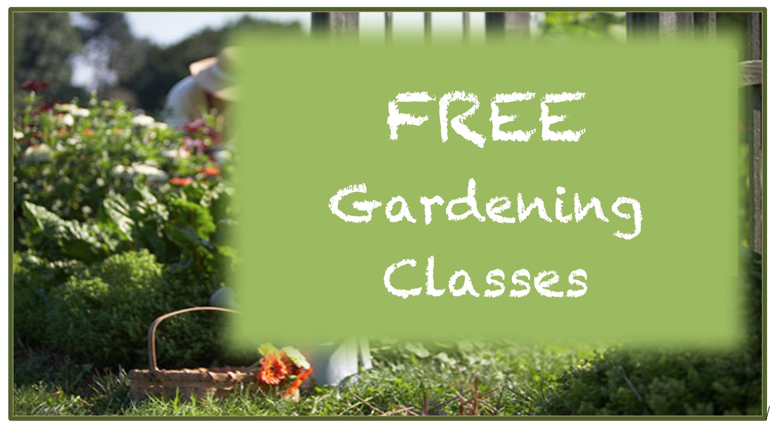 Gardening Class Schedule